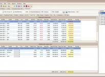 Capital Gain Report